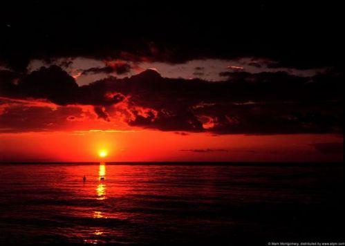 cayman-sun