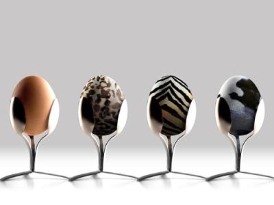 bald-eggs